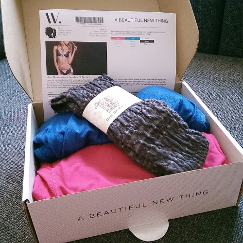 Wantable Intimates Review December 2015
